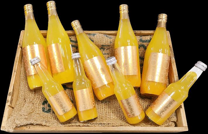 瓶(1L・720ml・250ml)